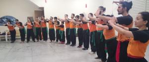 Kung Fu (Artes Marciais)